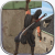 Tlcharger Code Triche Ninja Samurai Assassin Hero II APK MOD