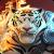 Tlcharger Gratuit Code Triche Might Magic Elemental Guardians APK MOD