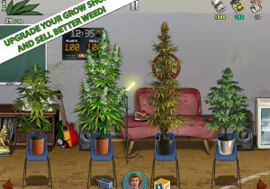 Weed Firm 2 Back to College astuce Eicn.CH 2